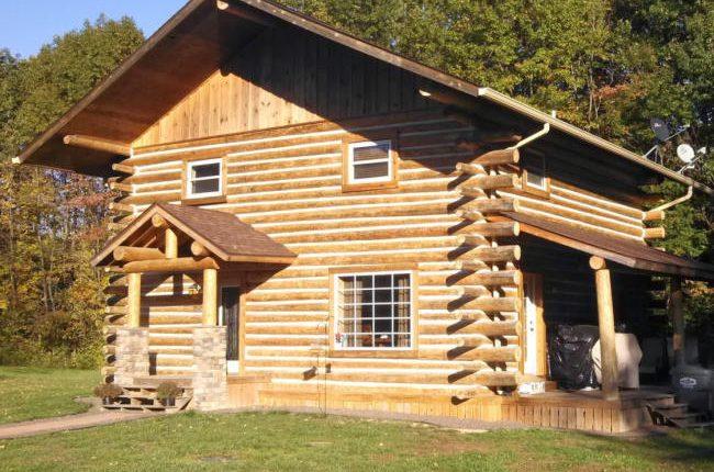 Build a Log Home1