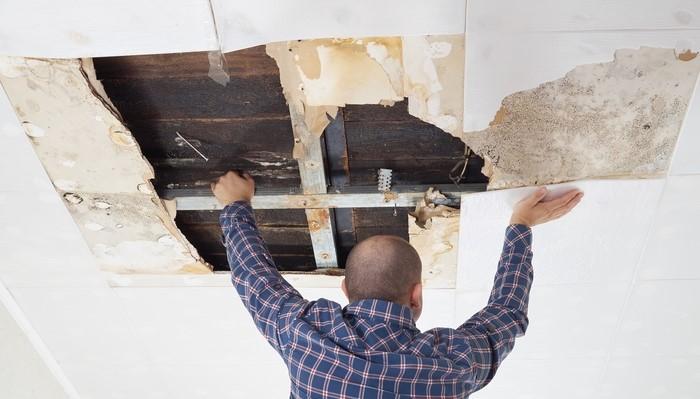 Repair or Clean the Damaged